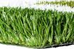 進口賽爾隆新國標50毫米足球場人造草坪
