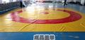 防滑地垫地胶 学校篮球场足球场跑道 幼儿园室外防护地垫