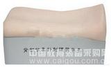 背部仿真针刺练习平台  产品货号: wi114201 产    地: 国产