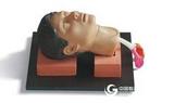环甲膜穿刺和切开训练仿真模型 上海秉恪科教设备有限公司