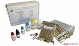 小鼠17羟皮质类固醇Elisa试剂盒,17-OHCS试剂盒