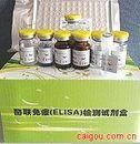 可溶性肿瘤坏死因子受体(sTNF-R 80kDa)ELISA试剂盒