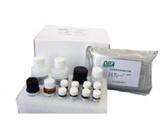 科研猴抗肝细胞膜抗体(LMA)ELISA试剂盒