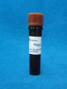 25988-63-0   sigma   多聚-L-赖氨酸(7-15万)