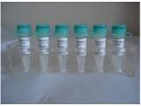 59219-65-7吡喃葡糖苷Darutoside