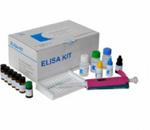 含硬化蛋白域蛋白1(SOSTDC1)检测试剂盒(酶联免疫吸附试验法)
