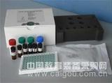 鸡网状内皮增生症(Chicken REV)elisa试剂盒