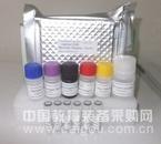 鱼孕激素/孕酮(PROG)ELISA试剂盒