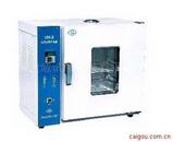电热恒温鼓风干燥箱101A-1-2-3-4