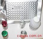 谷氨酰胺转移酶IgA Elisa kit