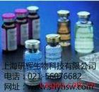 人内皮素1(ET-1)ELISA 试剂盒