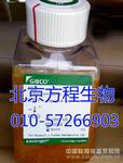 GIBCO10439-016GIBCO原装血清价格