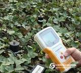 土壤温度、水分、盐分三参数速测仪