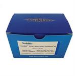 TonkBio cDNA 第一链合成试剂盒