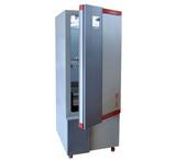 BMJ-250升级型液晶屏霉菌培养箱