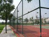 供應體育場圍欄網