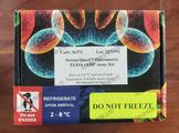 AAT Bioquest Cell Explorer?活细胞标记试剂盒 *橙色荧光,在405nm激发 22616