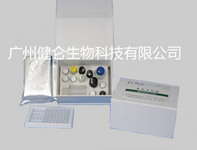 伪狂犬病毒gE蛋白抗体检测试剂盒