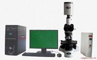 精子分析仪