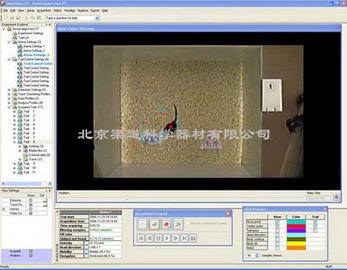 EthoVision XT动物昆虫行为分析系统