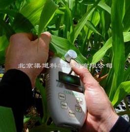 CCM-200叶绿素含量测量仪
