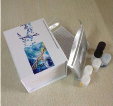 人Ⅰ型胶原C端肽(CTX-Ⅰ)ELISA试剂盒