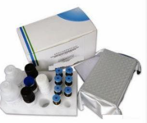 人可溶性粘附分子试剂盒
