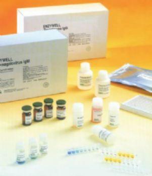 大鼠纤溶酶原激活物抑制因子1(PAI-1)ELISA试剂盒
