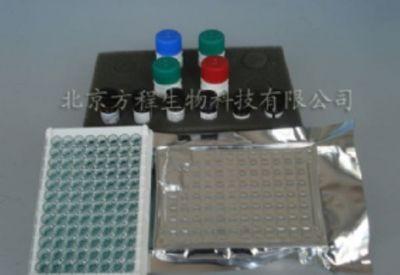 人细胞角蛋白20(CK20)ELISA试剂盒Kit价格|代测
