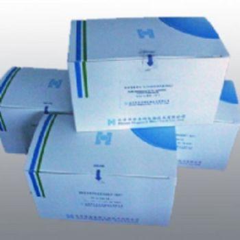 人基质金属蛋白酶10(MMP-10)ELISA试剂盒