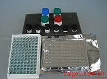 人Elisa-β内啡肽试剂盒,(β-EP)试剂盒