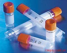 臂板蛋白3F(Sema3F)抗体
