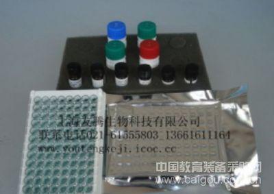 人肌酸激酶同工酶MB(CK-MB)ELISA Kit