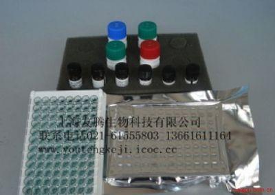 过氧化物酶体增生物激活受体 酶联免疫/酶免法(ELISA 试剂盒)