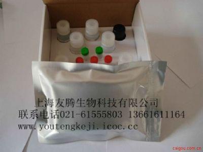 大鼠B-淋巴细胞趋化因子16(CXCL16) ELISA试剂盒