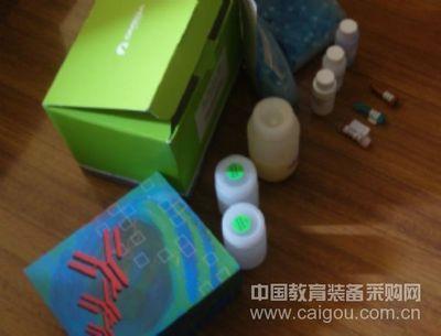 人高敏三碘甲状腺原氨酸,u-T3圻明ELISA试剂盒