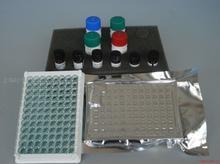 小鼠内分泌腺来源的血管内皮生长因子(EG-VEGF)ELISA试剂盒说明书
