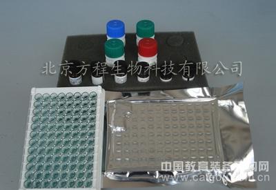 人抗中性粒细胞抗体 ELISA价格,人ANA ELISA Kit检测代测