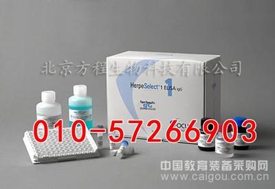 小鼠肿瘤标志物(CA724)代测/ELISA Kit试剂盒/说明书