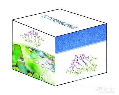 人骨成型蛋白质7(BMP-7)ELISA定量分析试剂盒