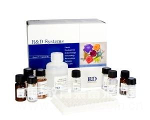 胰岛素,大鼠胰岛素(INS)ELISA试剂盒价格