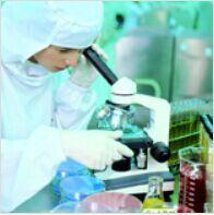 进口标准品Ganciclovir Bisvaline Ester