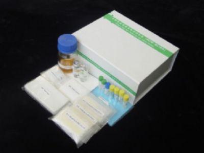 人Dickkopf 1(DKK1)ELISA试剂盒  规格