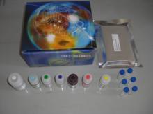 人甘胆酸(CG)ELISA试剂盒