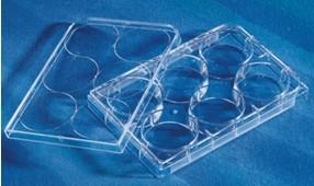 Corning CellBIND 表面细胞培养板 3335 3336 3337 3300 3340 3683