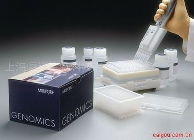 人谷氨酸脱羧酶自身抗体ELISA试剂盒