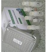 兔FDP ELISA/兔子血纤蛋白原降解产物试剂盒