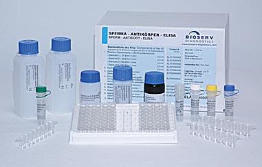 小鼠巨噬细胞来源的趋化因子试剂盒/小鼠MDC/CCL22 ELISA试剂盒