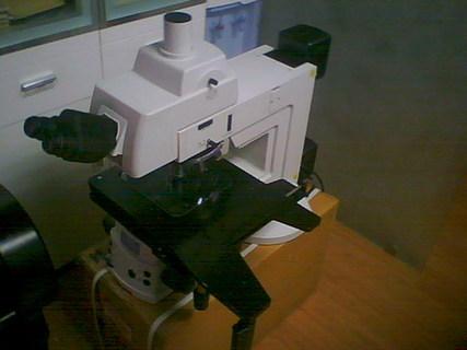 NIKON L200D 透反射半导体显微镜(展示机)