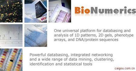 BioNumerics